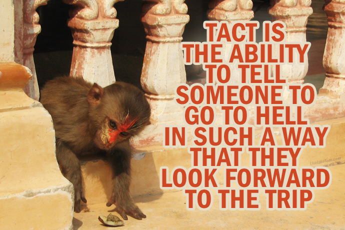 quote---tact-is-the-ability-liveliketom