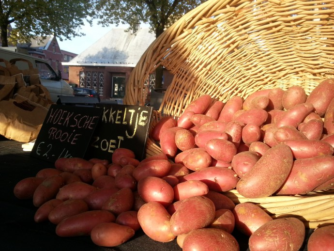 aardappel oogst rotterdam