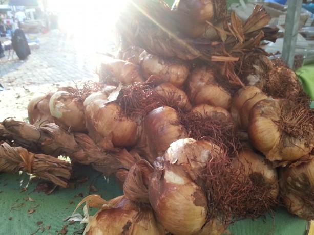 rotterdamse oogst gerookte knoflook