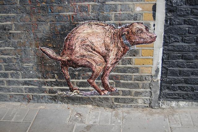 dog shit graffiti creative