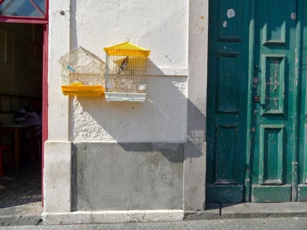 porto doors