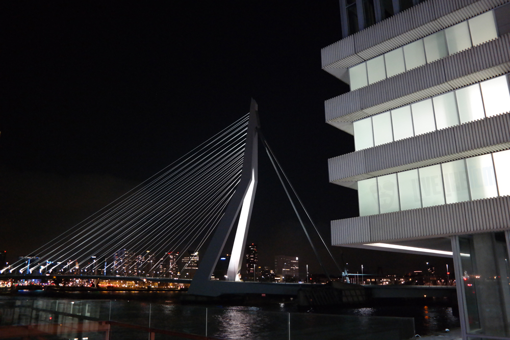 view erasmus bridge rotterdam restaurant