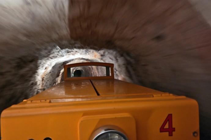 train postojna cave