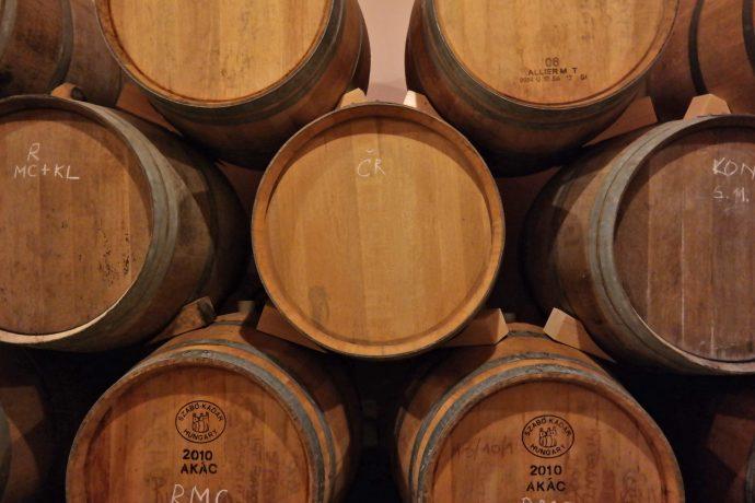 hisa-stekar-wine-cellar-brda-slovenia