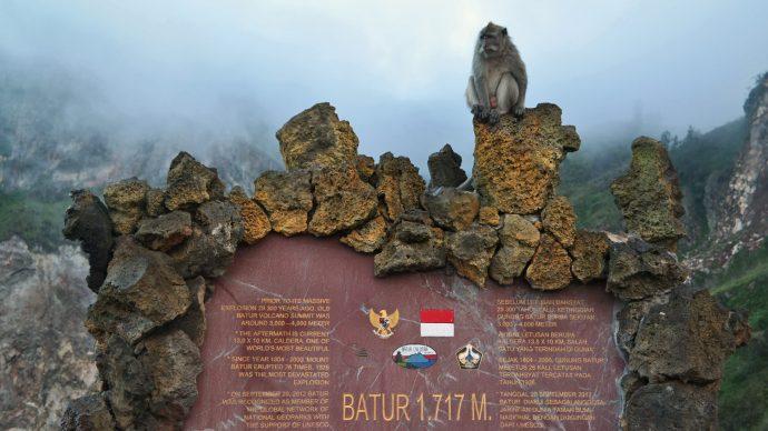 monkey mount batur statue