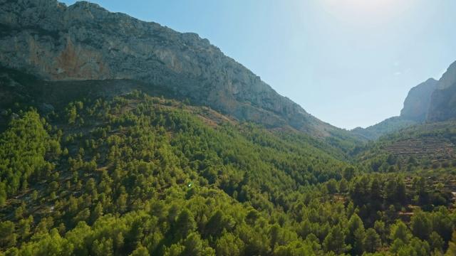 natuur in de omgeving van Benidorm