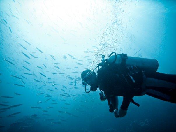 gay travel blog liveliketom scuba diving egypt