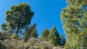 hiken op Gran Canaria wandelen