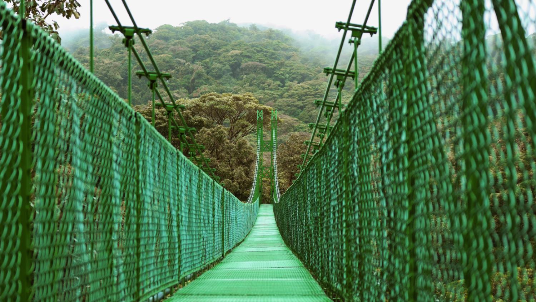 skywalk tour monteverde hanging bridges